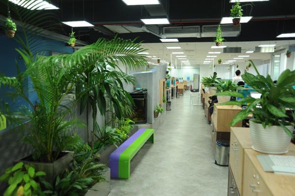 Không gian xanh văn phòng
